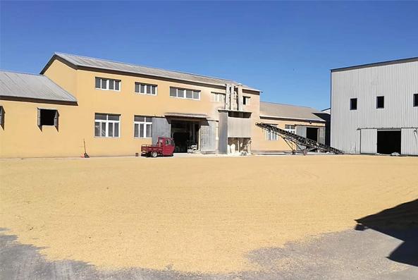 大米加工厂区图片