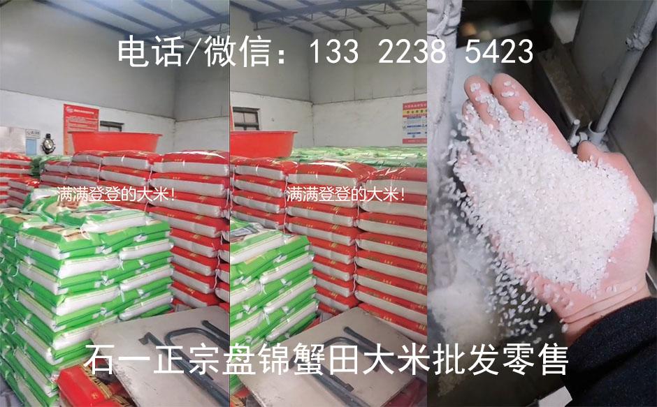圆粒香米图片