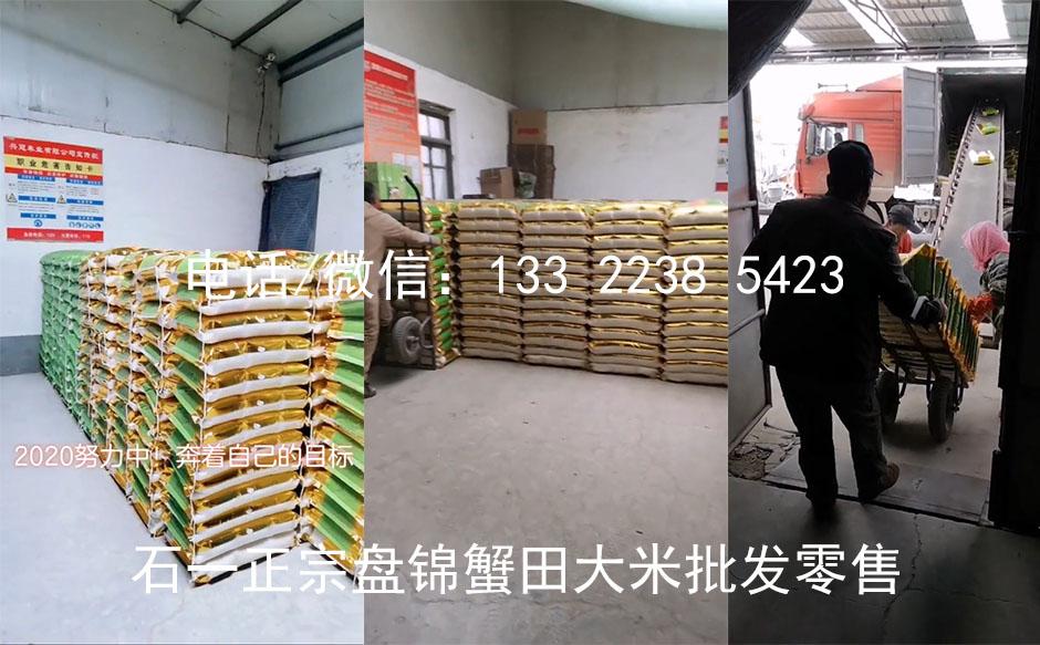 盐丰品种大米图片
