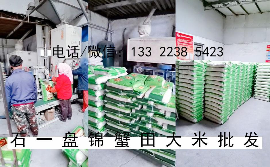 丰锦品种大米图片